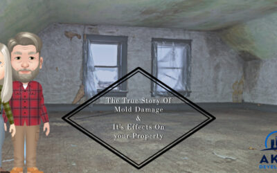 The True Story Of Mold Damage & Its Effects On your Property In Washington, DC